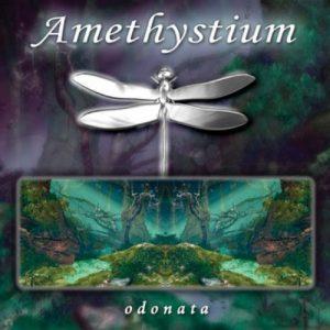 Amethystium - Odonata