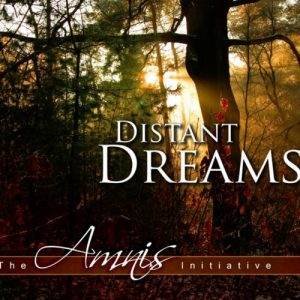 The Amnis Initiative - Distant Dreams