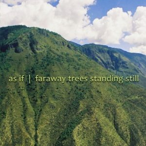 As if – Faraway Trees Standing Still
