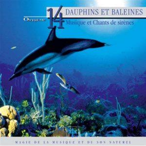 Vincent Bruley - Dauphins et Baleines