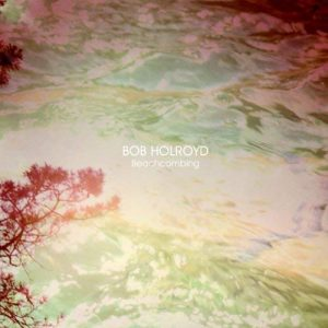 Bob Holroyd - Beachcombing