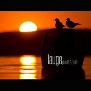 Lauge – Pusterum