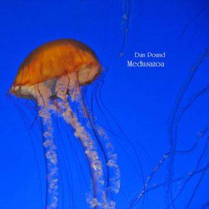 Dan Pound – Medusazoa
