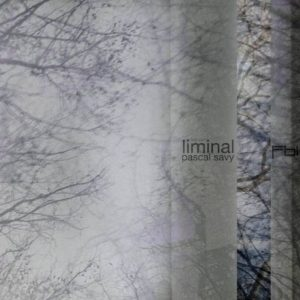 Pascal Savy - Liminal