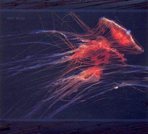John Vorus - Transmuting Currents