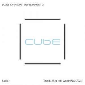 James Johnson – Environment 2