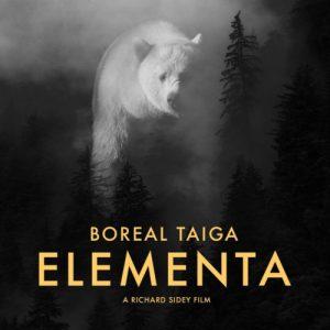 Boreal Taiga - Elementa Soundtrack