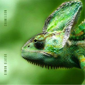 Simon Slator - Chameleon